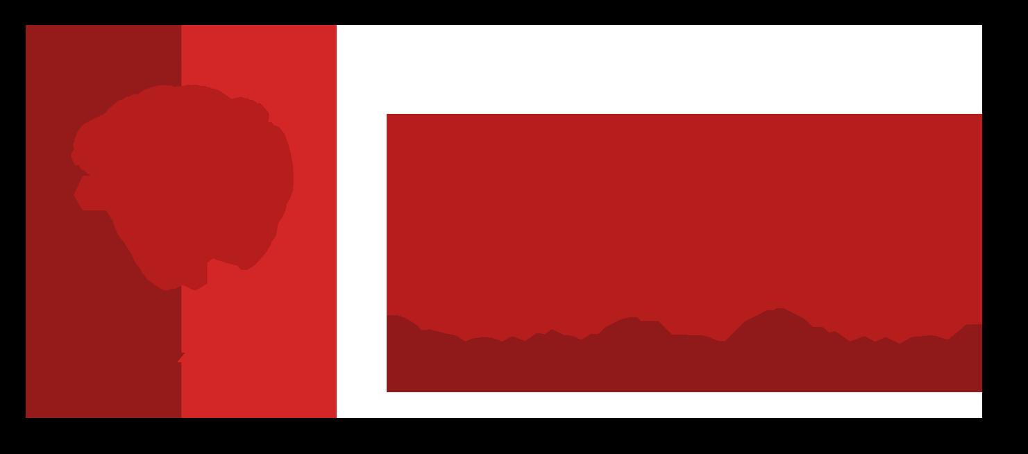 GTS Seguridad Privada